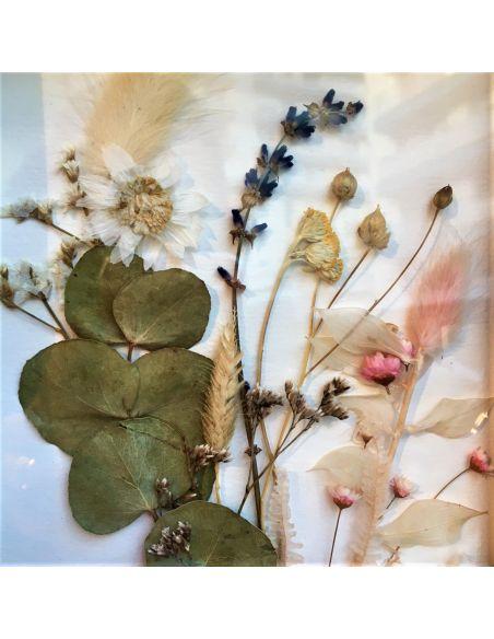 cadre fleurs séchées Pauline